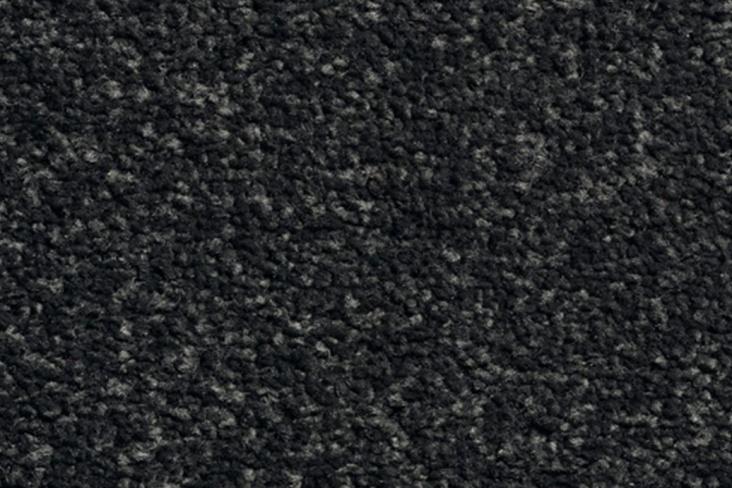 CAROUSEL-Platinum